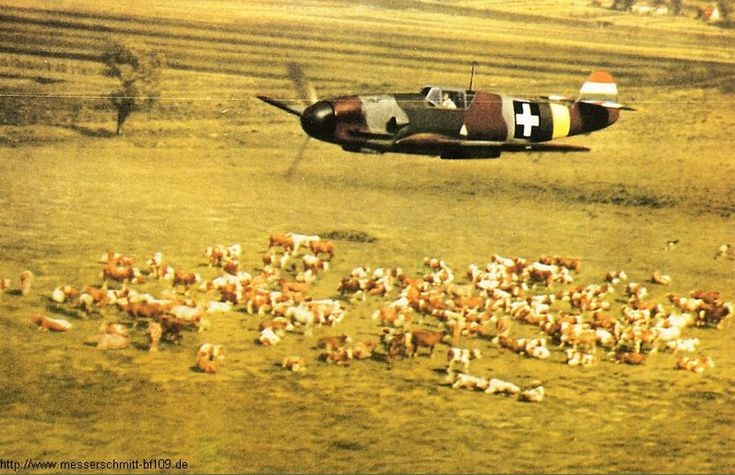 Bf-109F experimental-camouflage Hungarian Royal Air Force in WWll.