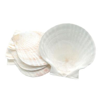 Fox Run Craftsmen Novelty Nantucket Seafood Shell Baking Dish