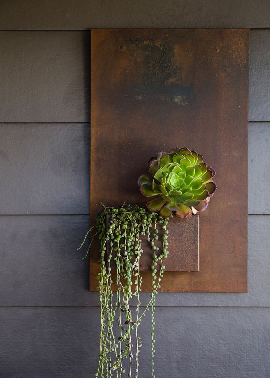 vertical gardening wall planter succulent Potted Store Sunset Magazine Container Garden