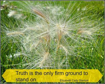 """TRUTH  is the only firm ground to stand on.""  ~Elizabeth Cady Stanton"