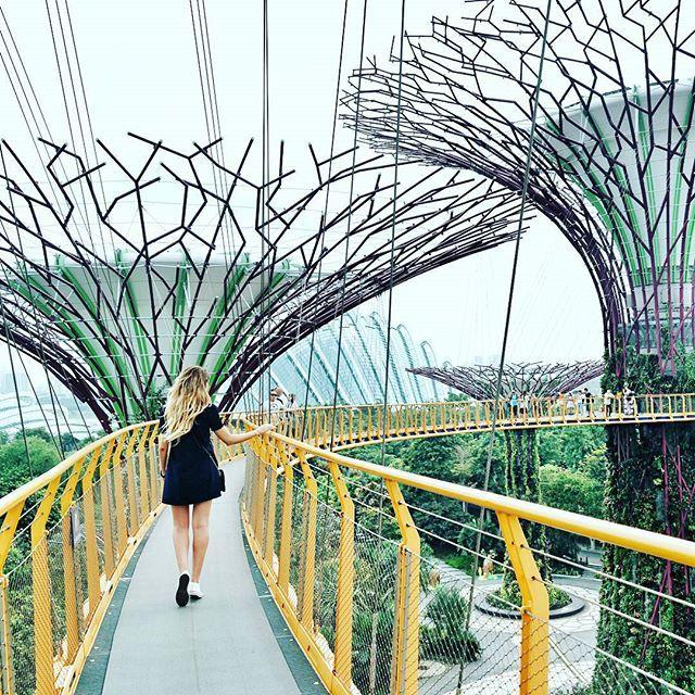 [Diario di viaggio] oggi, sul blog, trovate il mio racconto su Singapore: pagine di un diario di settembre scritto  fra un'andata ed un ritorno. Avete mai pensato a quale sarebbe la sensazione di passeggiare nel regno di Avatar? Perché é così che mi sono sentita passeggiando nei Gardens by the Bay ed i suoi alberi delle anime, come piace chiamarli a me. #nx30 @samsungcamera