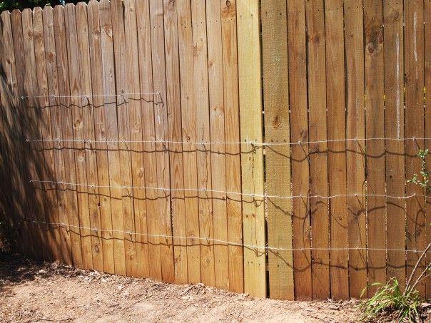 Diy Trellis Make A Trellis Out Of Wire Diy Wall 640 x 480