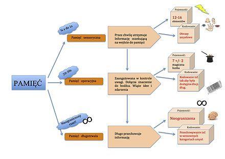 Mapa poznawcza na przykładzie rodzajów pamięci.jpg