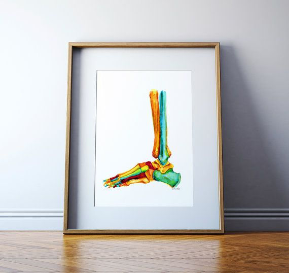 Foot and Ankle Bones Watercolor Print - Podiatry Print - Anatomy Art