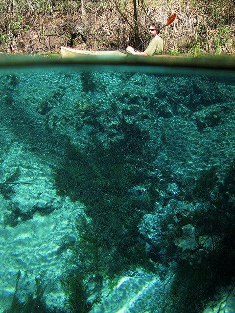 Econfina Creek   gainer spring number 3 vent c, econfina creek, bay county, florida ...