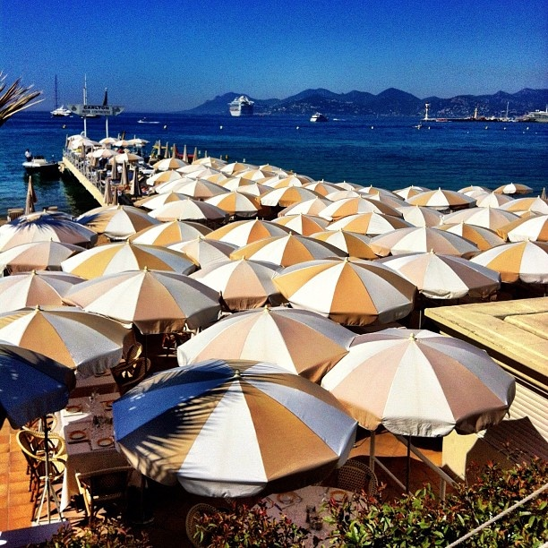 Sea of Umbrellas. #CannesLions  (via @Humberto Cunha - #statigram)