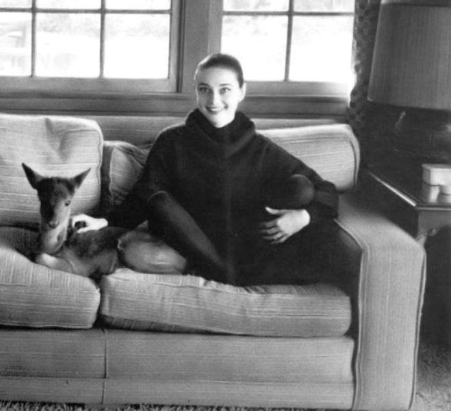 Audrey e Pippin na casa da atriz em Los Angeles por Bob Willoughby, 1958