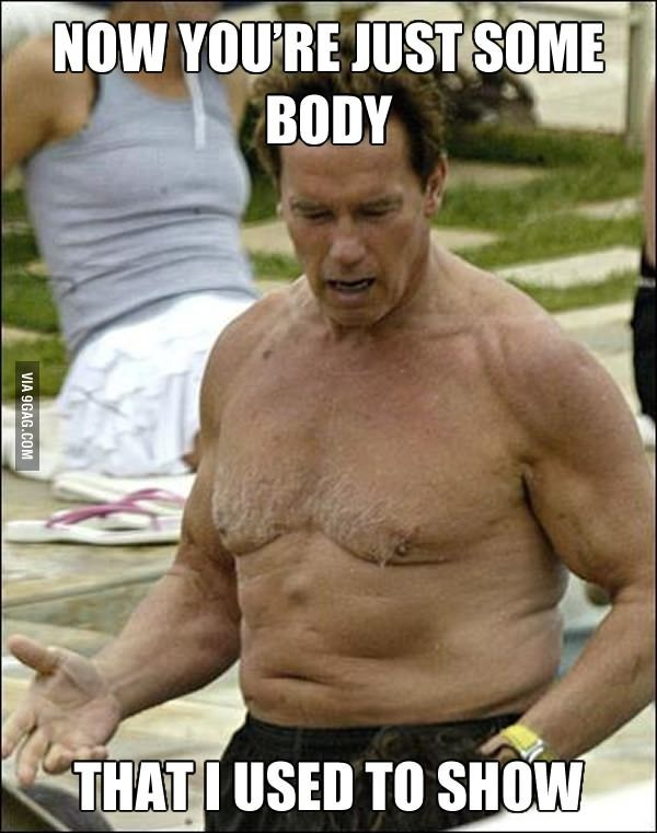 16 best Arny is my fav images on Pinterest Ha ha, Hilarious and - fresh arnold blueprint day 11
