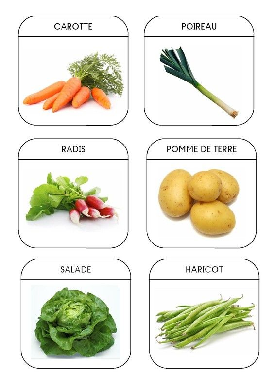 Imagier du jardin - Les légumes 1