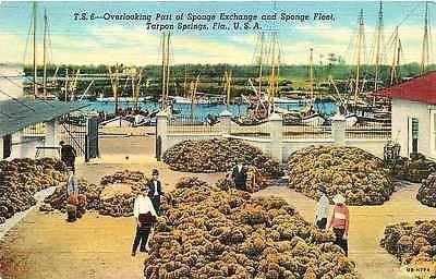 Tarpon Springs Florida FL 1940 Sponge Exchange and Sponge Fleet Vintage Postcard…Greek sponge divers capitol of North America.