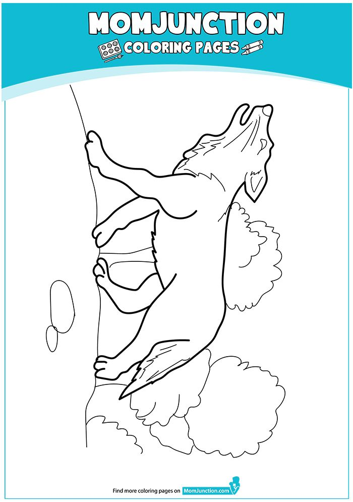 Printable Gray Wolf Coloring Pages 16