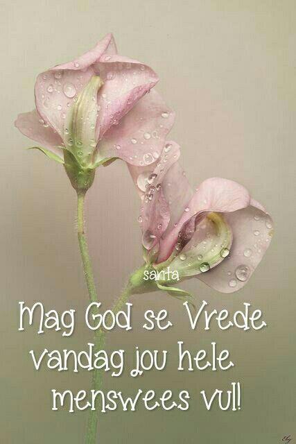 Mag God se Vrede vandag jou hele menswees vervul... #Afrikaans #BesteWense  (Sarita)
