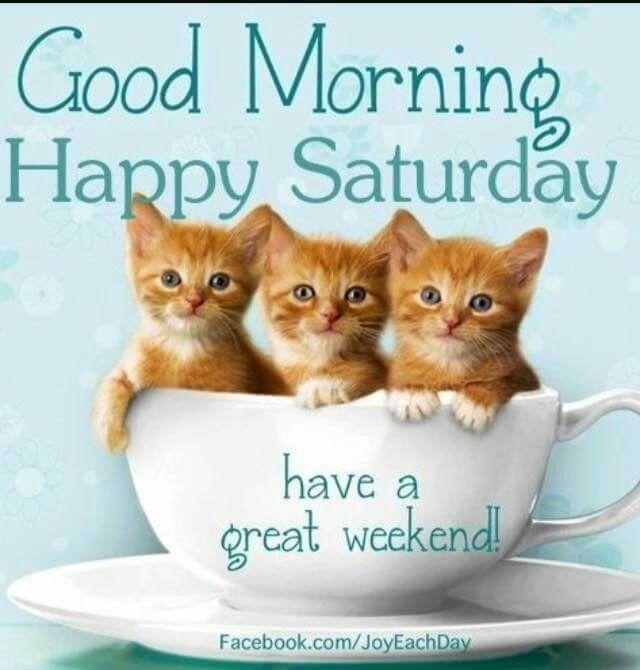 good morning all