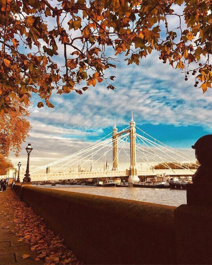 London, Albert-híd