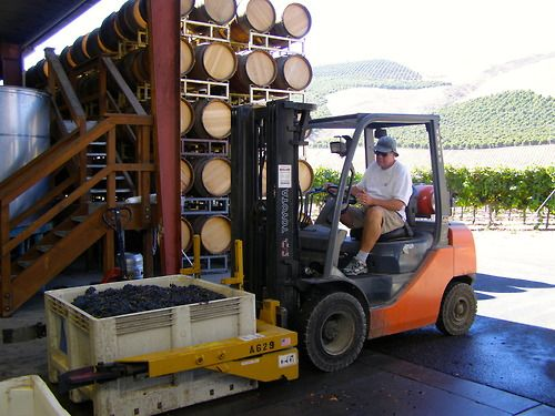 Bob driving a forklift like a boss #sbcharvest