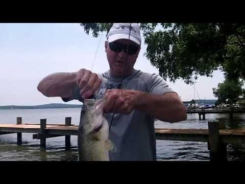 TIPS AND TACTICS FOR SUMMER BASS ON THE UPPER CHESAPEAKE ...