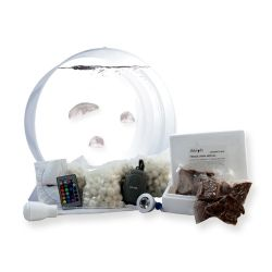 This is a JellyFish Art kit. Perfect for your dad's office. Comes with 3 jellyfish. Very quiet, color changing lights and even has a filter. #WaterpikgiftsforDads