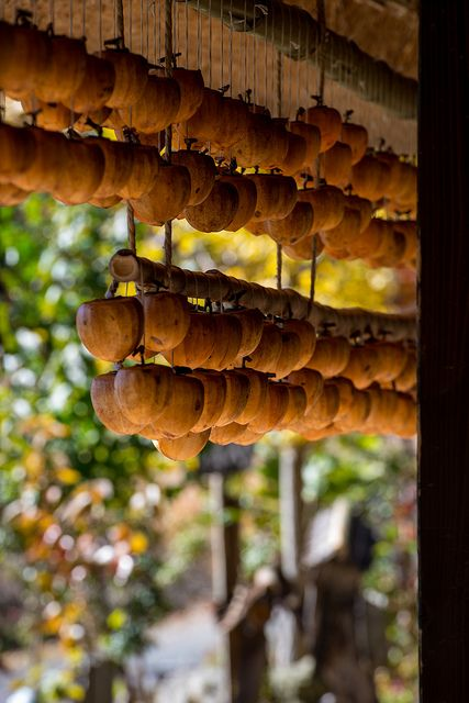 Japanese dried persimmons