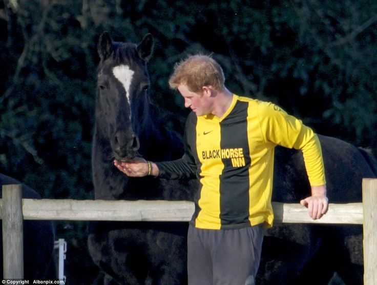 During a break in the match Harry, an accomplished equestrian, found a friend in the form ...