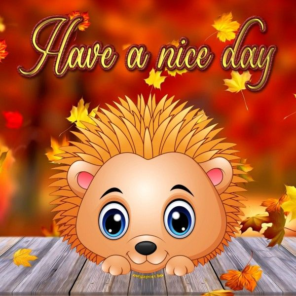 Have A Nice Day Good Morning Animation Cute Good Morning Good Morning Happy