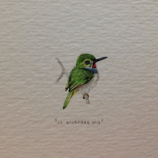 Bee hummingbird - the smallest bird in the world.