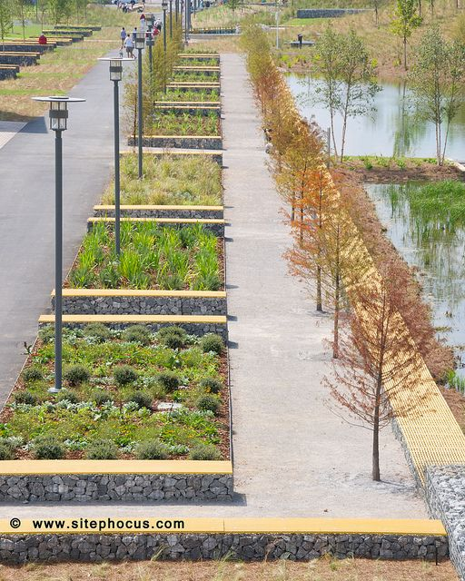Park space, raised beds could be used for urban garden/edibles.