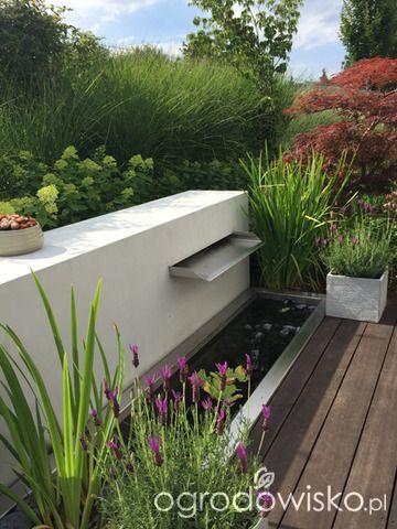 Ogród pod trzema dębami - strona 141 - Forum ogrodnicze - Ogrodowisko