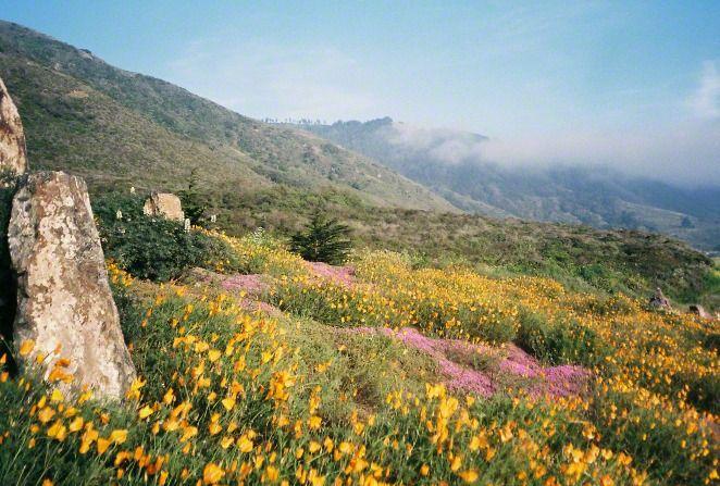 Beautiful mountain. :)