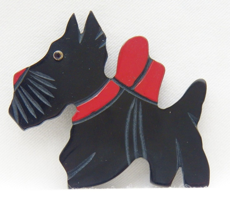 pin coolest scottie - photo #5