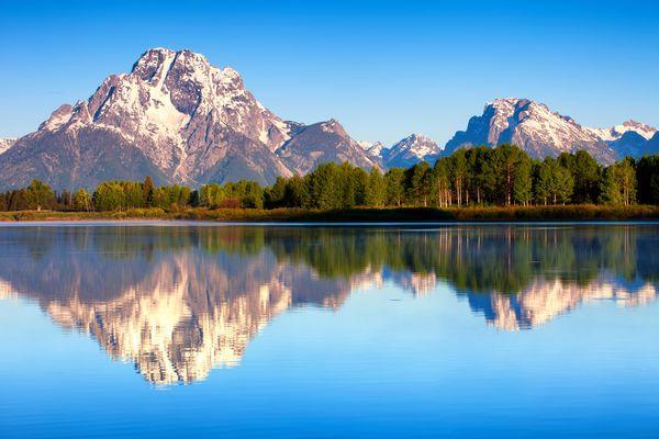 Обои США, лес, Гранд-Титон национальный парк, отражения, утро, природа, озеро Джексон, Mount Moran, лето, штата Вайоминг