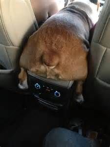It doesn't matter how I get to the front seat - just that I do ...