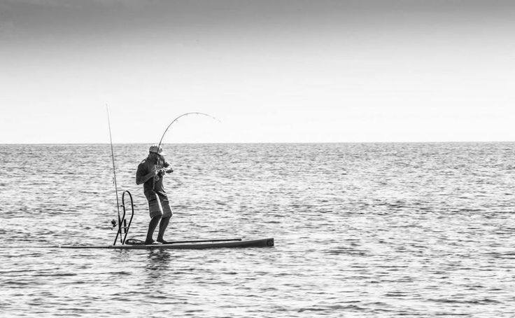 The BOTE Rackham board is perfect for your SUP Fishing needs.   All photos courtesy: BOTE Boards