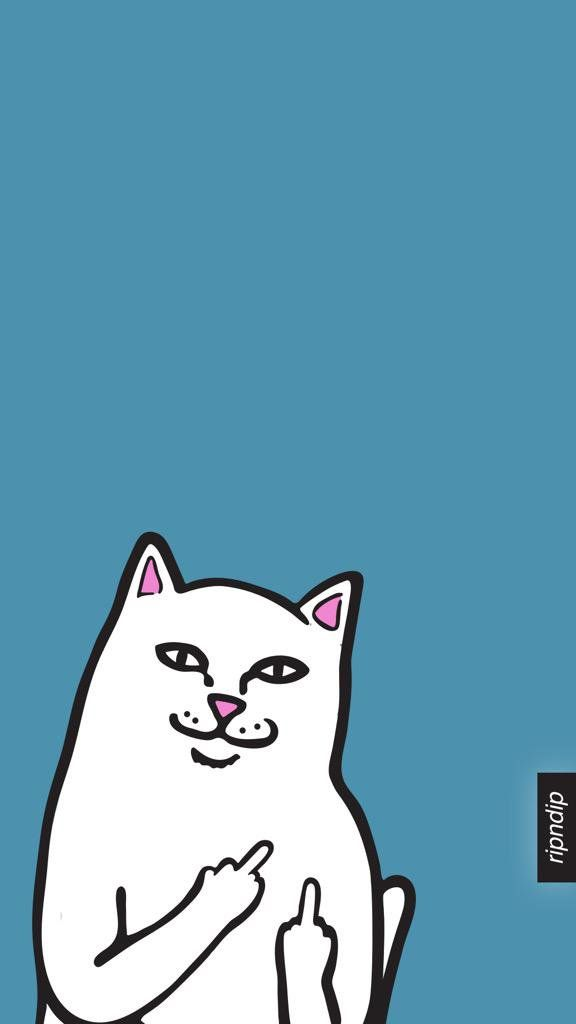 RIP n DIP white cat w/middle finger