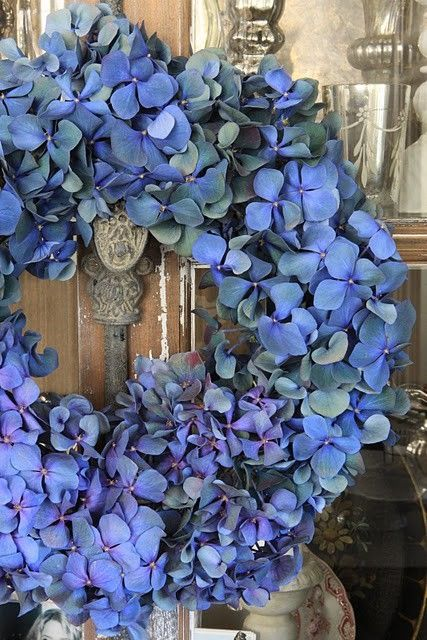 Blue Hydrangea wreath. Great idea for dried hydrangeas, they hold their color amazingly well.