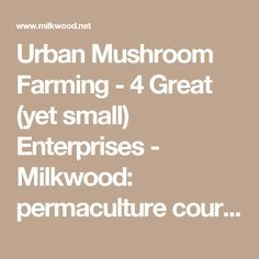 Urban Mushroom Farming - 4 Great (yet small) Enterprises - Milkwood: permaculture courses, skills + stories