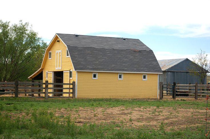 yellow barns