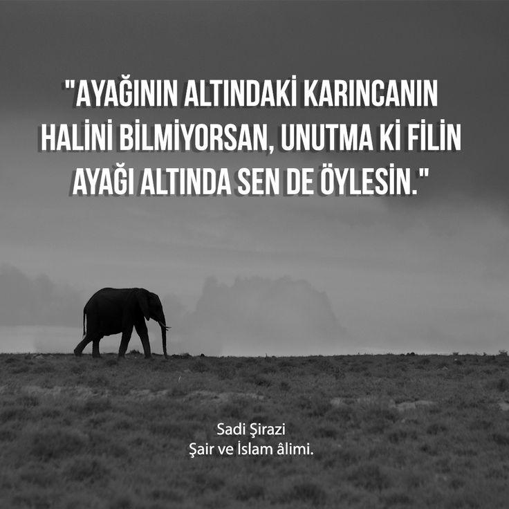 """""""Ayağının altındaki karıncanın halini bilmiyorsan, unutma ki filin ayağı altında sen de öylesin.""""  Sadi Şirazi Şair ve İslam âlimi."""