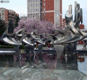 Fiare, Flori si reflexii