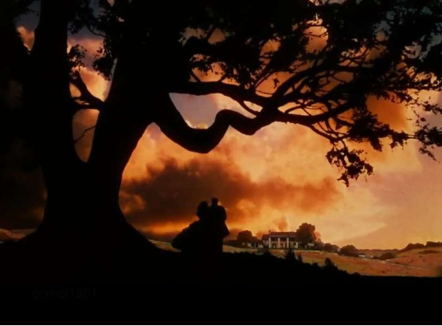 Gone with the wind book synopsis