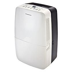 Garrison 70 Pint Dehumidifier with Pump | Canadian Tire $380