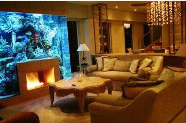 1000 ideas about aquarium setup on pinterest for Fish tank fireplace