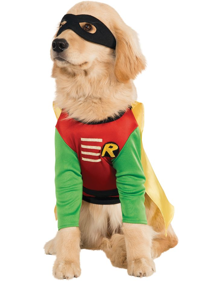 robin halloween costume for dogs