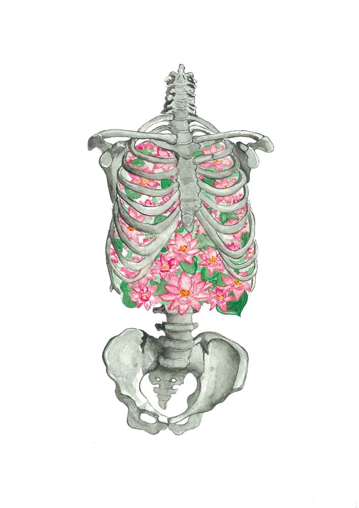 L'Écume des jours,  human skeleton,  anatomy art,  bones,  water lily flower, medicine drawing,  skeleton painting,  blooming ribs,  get well soon,  lungs blossom,  Froth on Daydream,  The Foam of Days, doctor