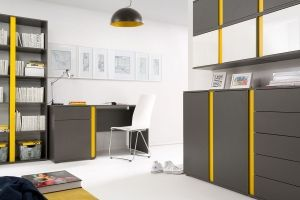 GRAPHIC BRW Cabinet (Home Office). It is an economical solution for those who want to decorate their interiors interesting and inexpensively. Polish BRW Modern Furniture Store in London, United Kingdom #furniture #polish #brw #homeoffice