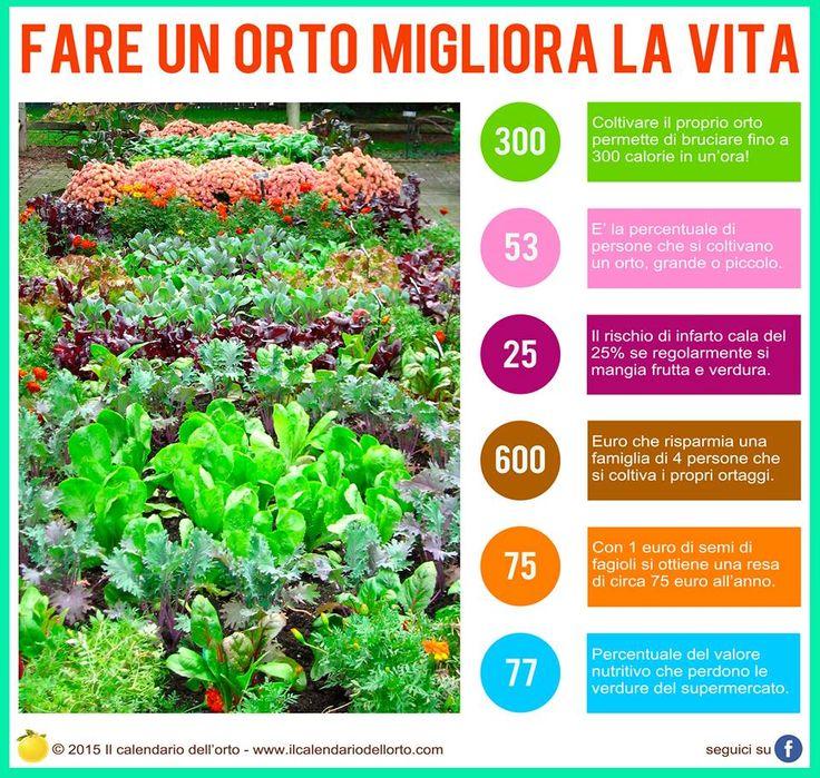 Fare un orto migliora la vita