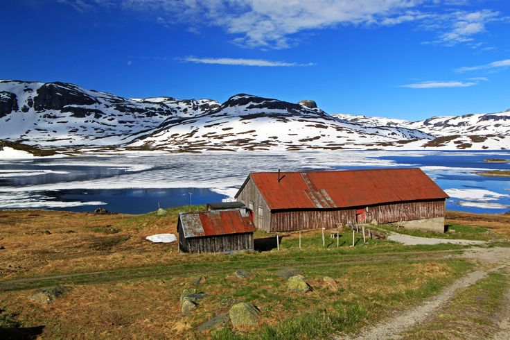 Haukelifjell juni 2014. Norway. https://www.flickr.com/photos/46637435@N04/sets/72157645276804996/