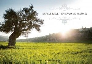 Bok om historiske fjell i Israel.