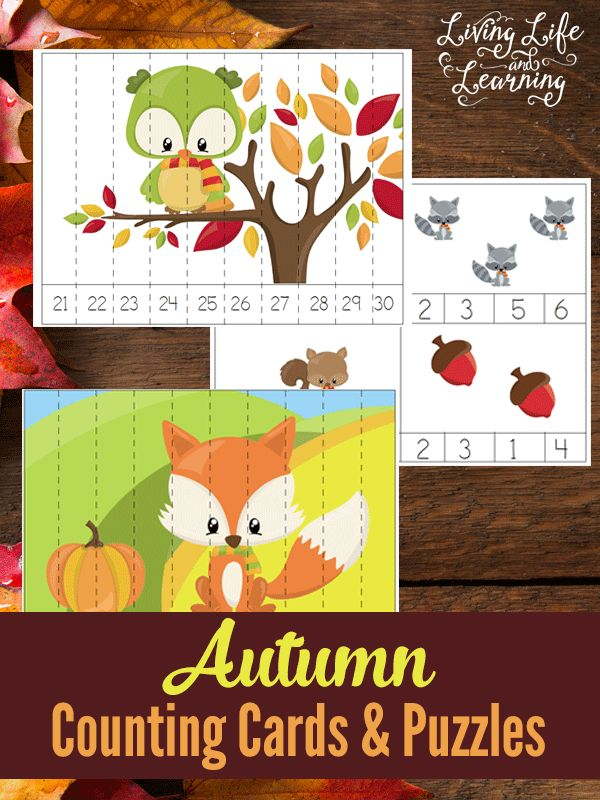 Perfect counting activities for preschoolers with these autumn counting cards and puzzles