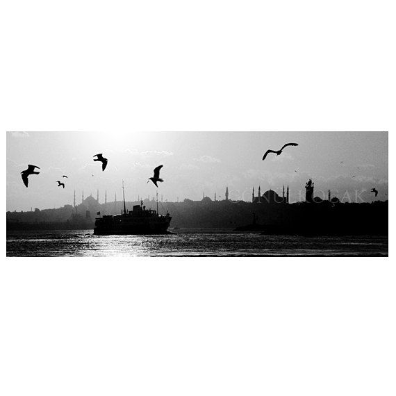 2549 best images about PhotographyWall Art on Pinterest