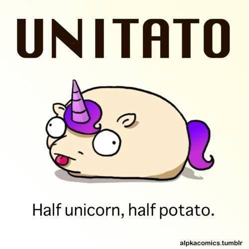 Unitato - I have NO idea why this makes me smile, but it does. So, I'm pinning it!